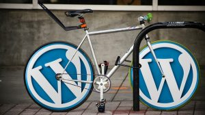 How To Speed Up Your WordPress Website For Free